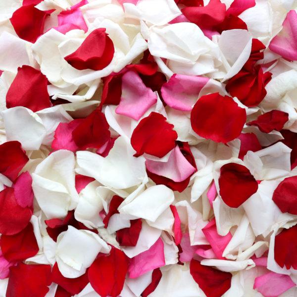 Микс лепестков роз без желтых