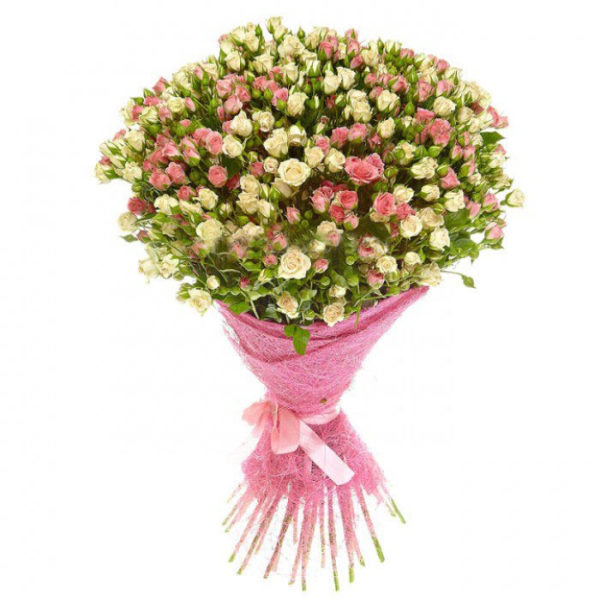 51 бело-розовая кустовая роза