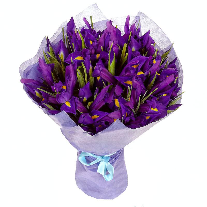 Заказ цветов синие ирисы, купить самара