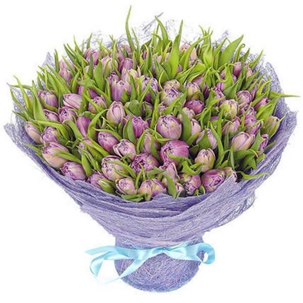 101 лавандовый тюльпан