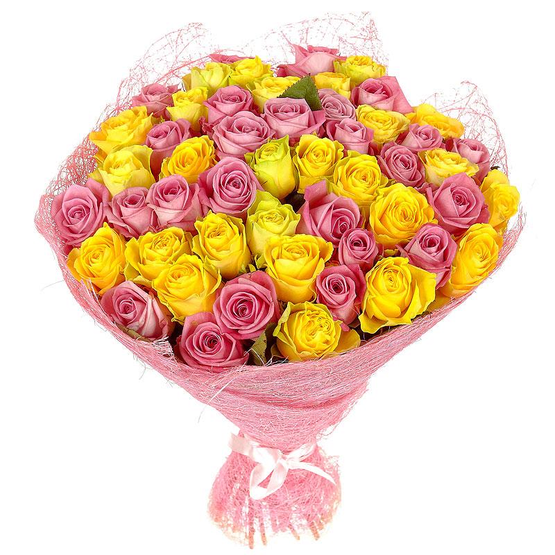 51 желто-розовая роза