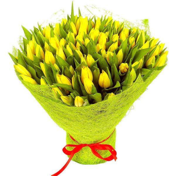 101 желтый тюльпан