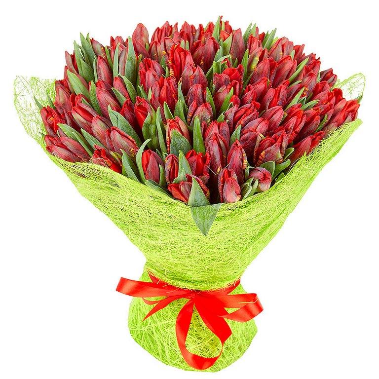 Доставка цветов по одессе тюльпаны москва