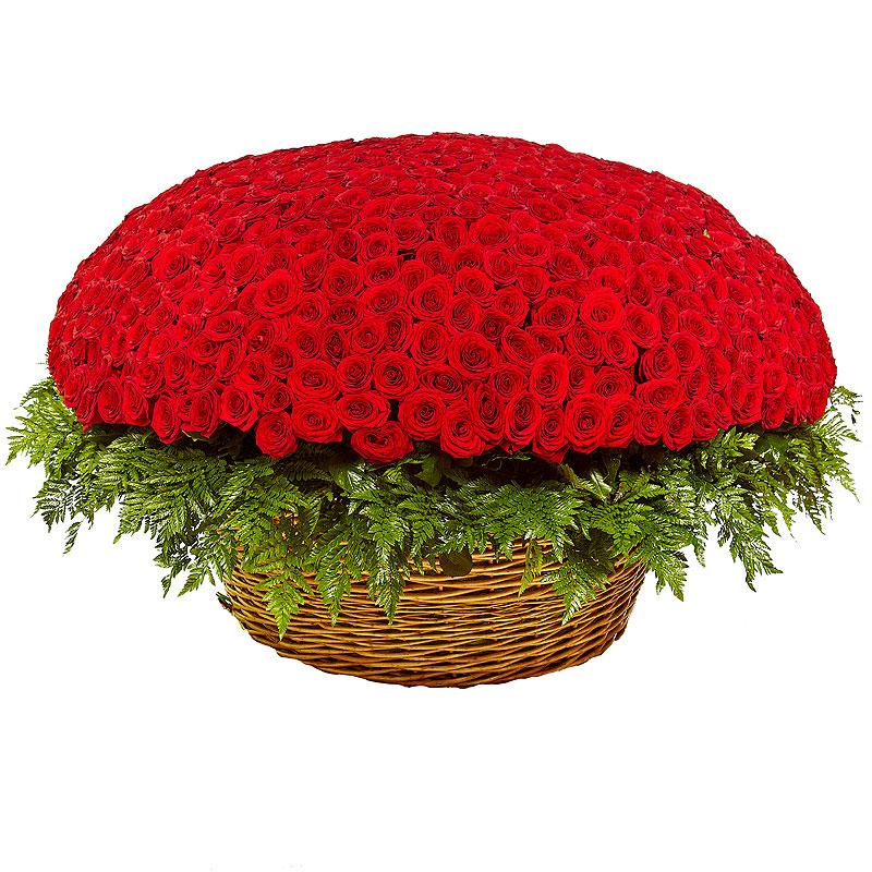 смотрел живые розы картинки букеты 1001 роза так часто придается