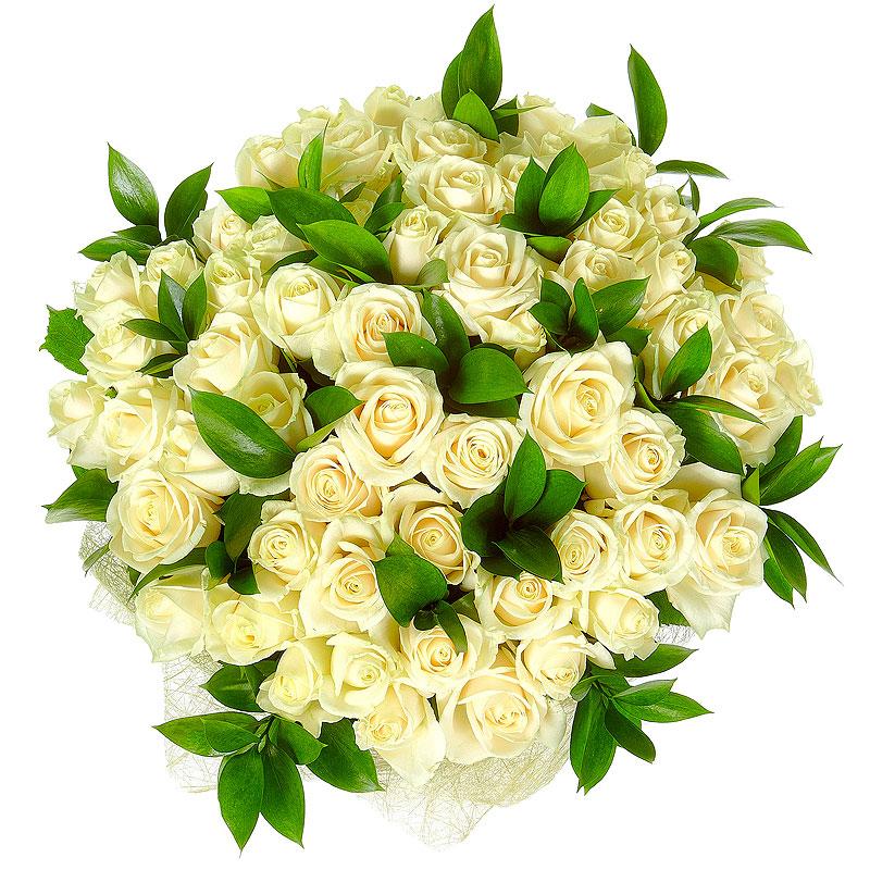 51 белая роза с рускусом
