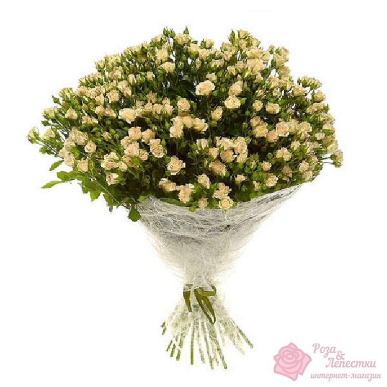 25 кремовых кустовых роз