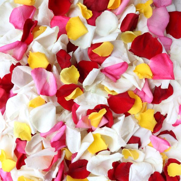 Микс лепестков роз