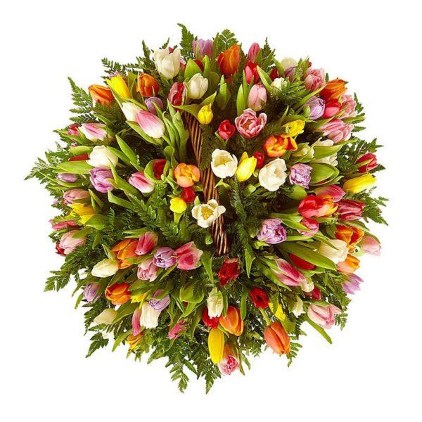 101 тюльпан в корзинке