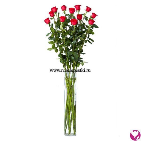 Розы 150см
