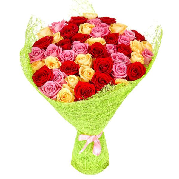 51 розовая, кремовая и красная роза