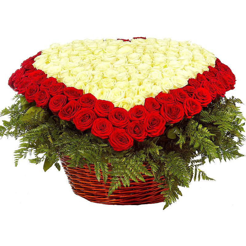 Сердце из 301 розы