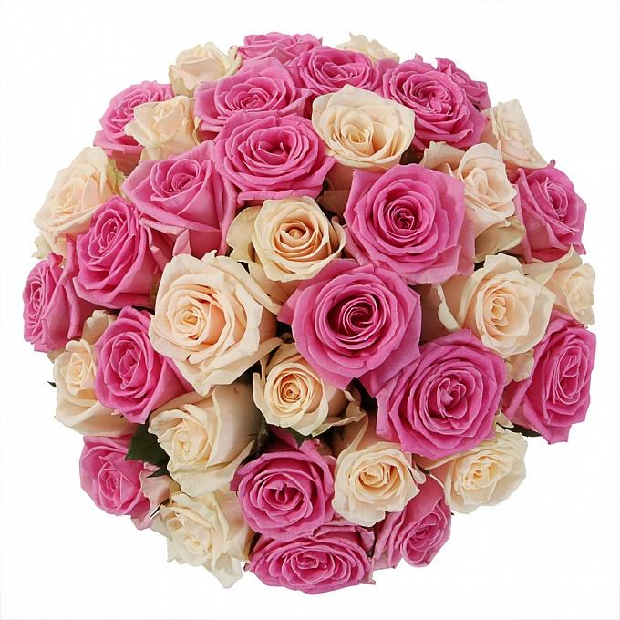31 розово-белая роза в шляпной коробке