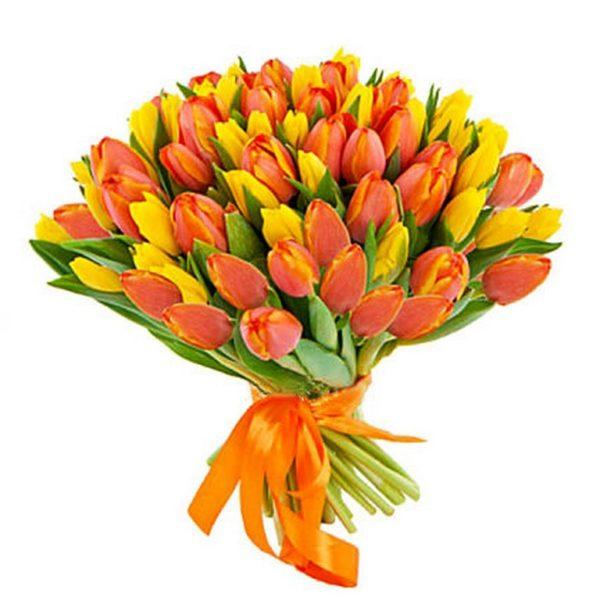 51 желто-оранжевый тюльпан