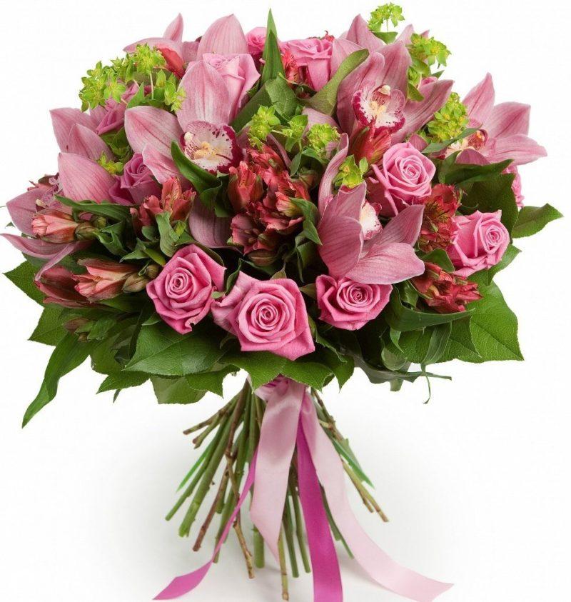 Красивые букеты цветов спб, орхидея петербурге