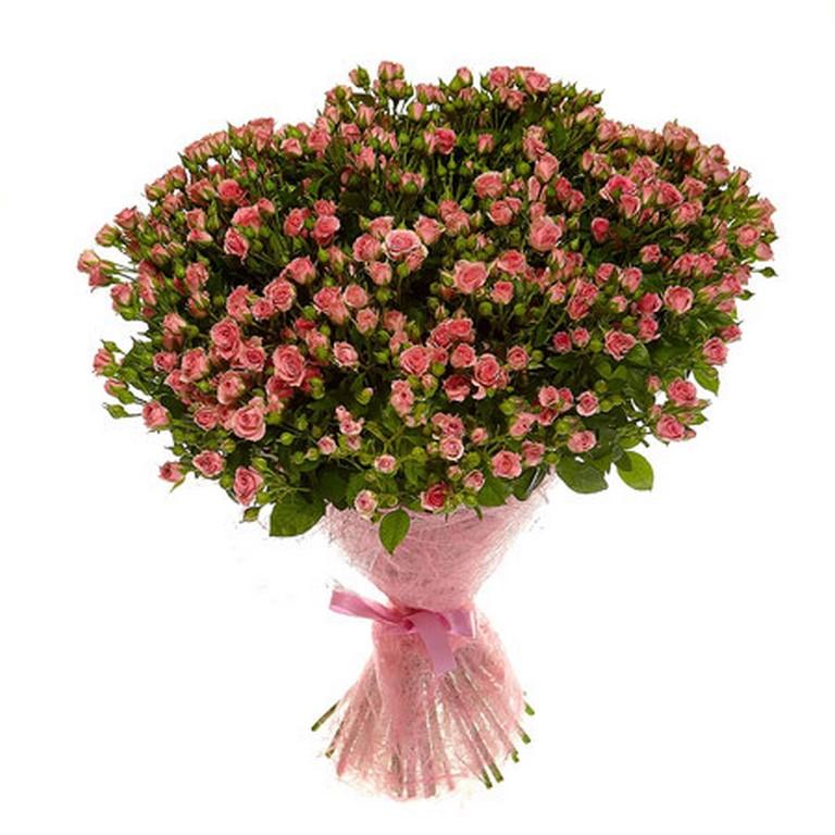 51 розовая кустовая роза