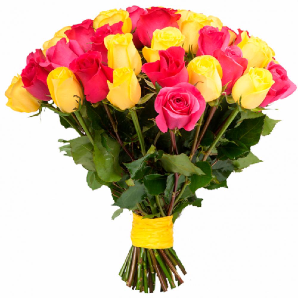 31 желто-розовая роза