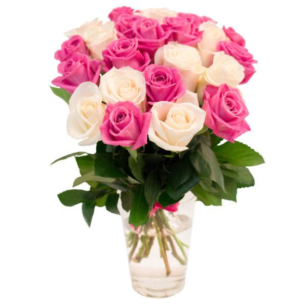 21 бело-розовая роза
