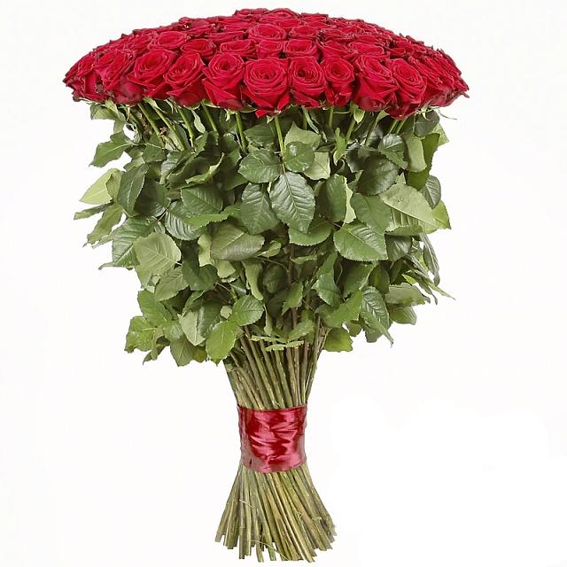 Заказать цветы лаванду