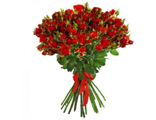 15 красных кустовых роз
