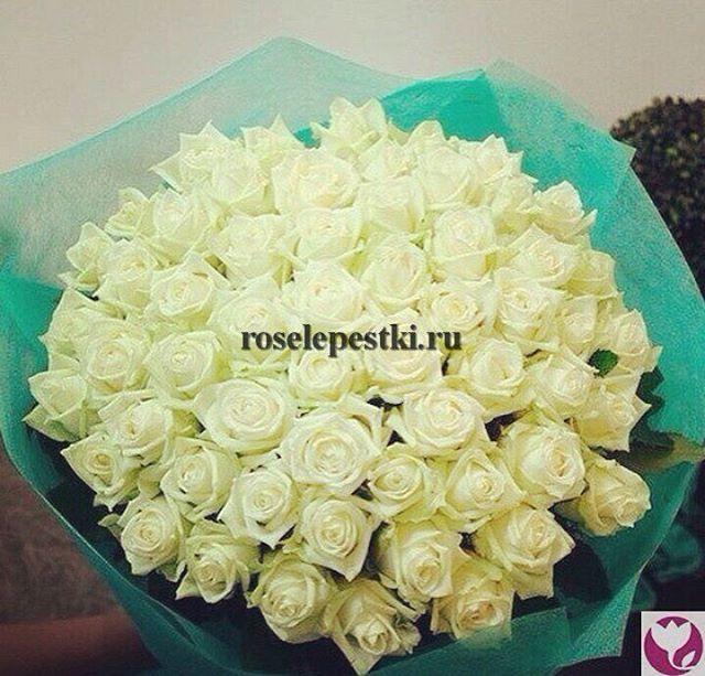 Самое время делать приятные подарки! Мы работаем ежедневно, с 08.00 до 22.00 и ждем Ваших заказов!Контакты: 8(499)755-85-06 (звоните) 8(905)783-35-35(WhatsApp,Viber)www.roselepestki.ru#москва#цветымосква#купитьцветымосква#доставкацветовмосква#заказатьцветымосква#букетымосква#купитьбукетмосква#доставкабукетовмосква#заказатьбукетмосква#доставкарозмосква#заказатьрозымосква#цветыдешевомосква#мск#лепесткирозмосква#подарокмосква#101розамосква#цветысдоставкоймосква#цветыназаказмосква#букетназаказмосква#магазинцветовмосква#цветывкоробкемосква#цум#гум#купитьлепесткирозмосква#лепесткирознасвадьбумосква#букетневестымосква#цветымск