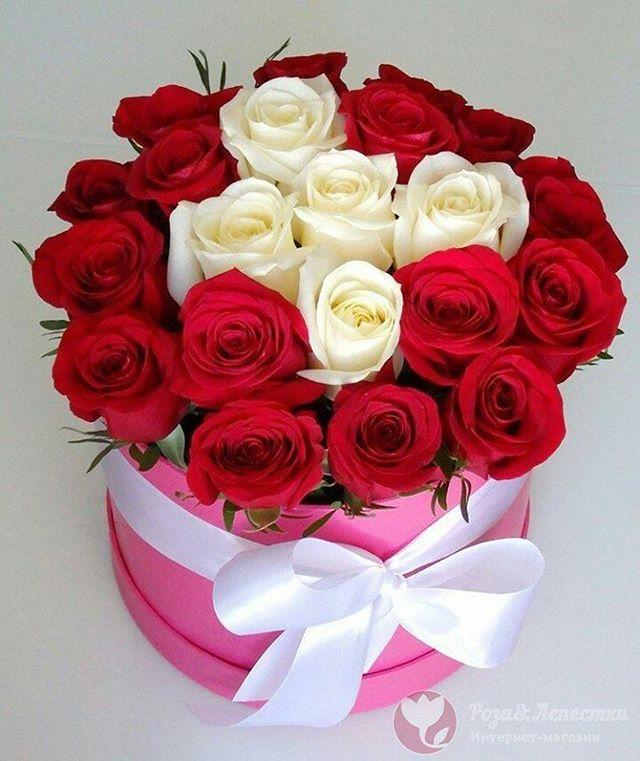Поздравить, извиниться, отблагодарить и просто сделать приятно можно, подарив букет шикарных цветов. ️Бесплатная доставка️Приятные скидки постоянным клиентам️Гарантия качества🚛Доставка цветов и лепестков в Москве и МО.Контакты:️ 8(499)755-85-06 (звоните) 8(905)783-35-35(WhatsApp,Viber)www.roselepestki.ru#москва#цветымосква#купитьцветымосква#доставкацветовмосква#заказатьцветымосква#букетымосква#купитьбукетмосква#доставкабукетовмосква#заказатьбукетмосква#доставкарозмосква#заказатьрозымосква#цветыдешевомосква#мск#лепесткирозмосква#подарокмосква#101розамосква#цветысдоставкоймосква#цветыназаказмосква#букетназаказмосква#магазинцветовмосква#цветывкоробкемосква#цум#гум#купитьлепесткирозмосква#лепесткирознасвадьбумосква#букетневестымосква#цветымск