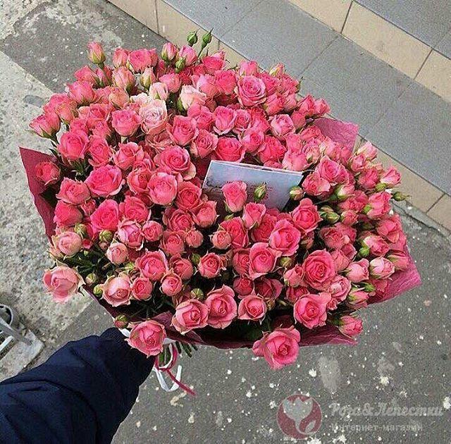 Спешите заказать букет для любимой️ и сделать этот день незабываемымДоставка цветов 1 в Москве@roselepestki️ Контакты: 8(499)755-85-06 (звоните) 8(905)783-35-35(WhatsApp,Viber)www.roselepestki.ru#москва#цветымосква#купитьцветымосква#доставкацветовмосква#заказатьцветымосква#букетымосква#купитьбукетмосква#доставкабукетовмосква#заказатьбукетмосква#доставкарозмосква#заказатьрозымосква#цветыдешевомосква#мск#лепесткирозмосква#подарокмосква#101розамосква#цветысдоставкоймосква#цветыназаказмосква#букетназаказмосква#магазинцветовмосква#цветывкоробкемосква#цум#гум#купитьлепесткирозмосква#лепесткирознасвадьбумосква#букетневестымосква#цветымск
