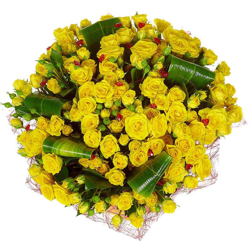 Заказать цветы из голландии киев с доставкой недорого