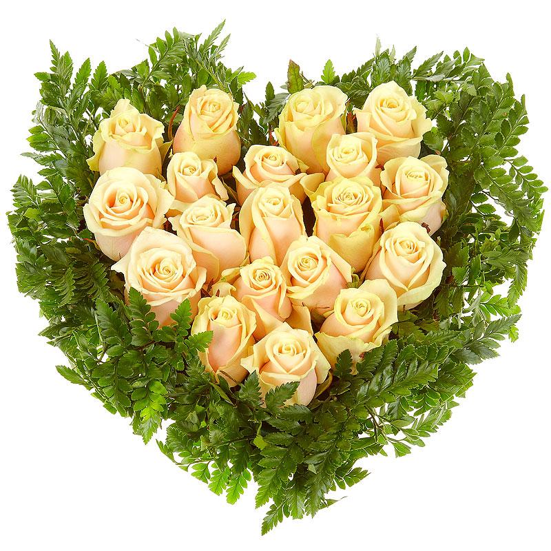 Кремовое сердце из 25 роз