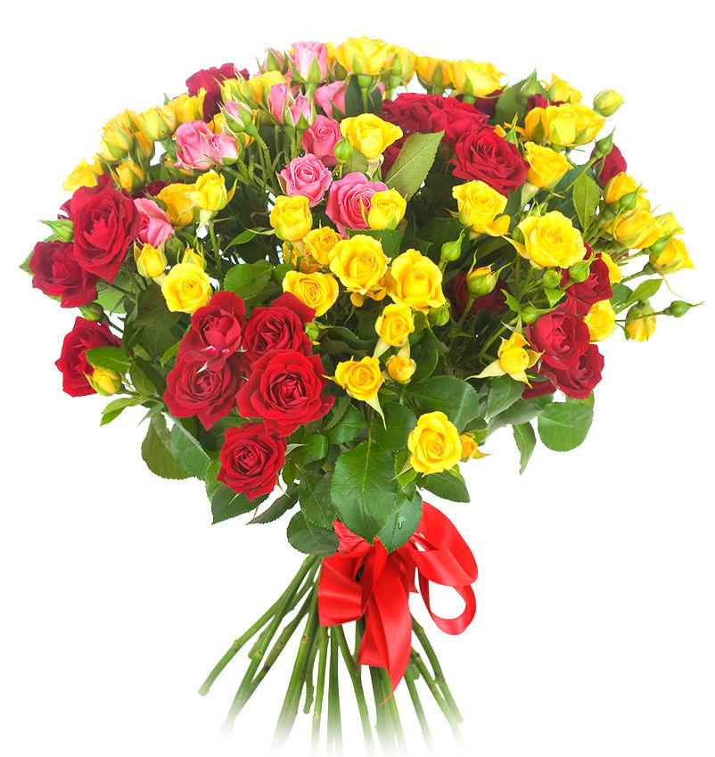 31 кустовая роза микс