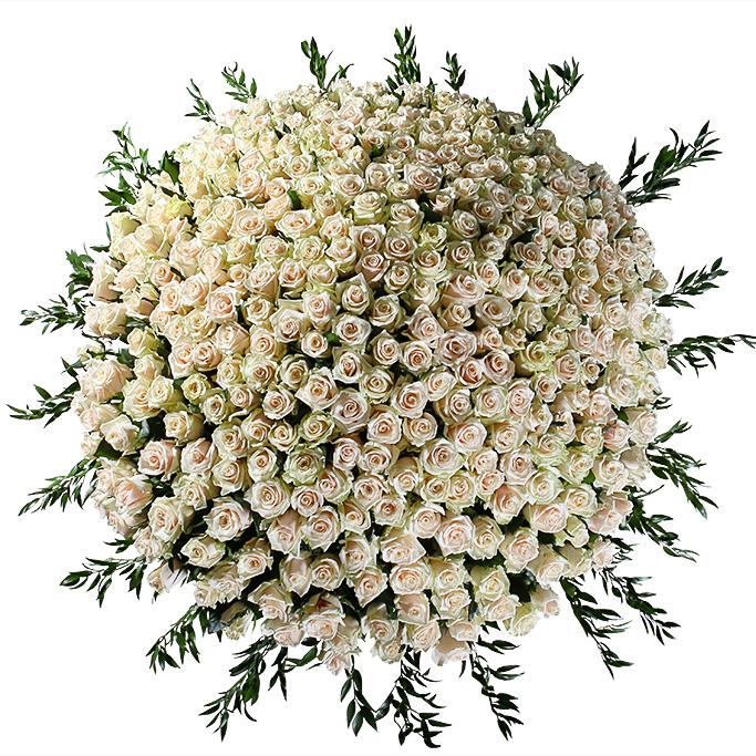 501 кремовая роза в корзине