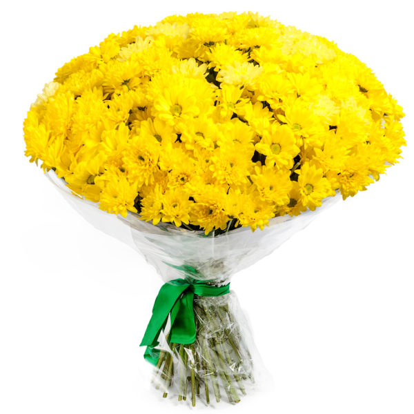 Букет из 39 желтых хризантем
