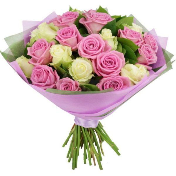 31 бело-розовая роза