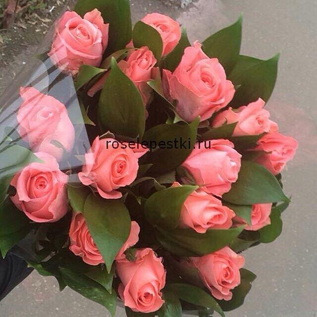 21 рыжая роза